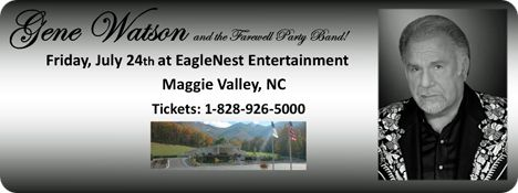 EagleNest Entertainment, 2701 Soco Road, Maggie Valley, NC