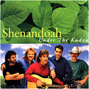 Shenandoah: 'Under The Kudzu' (RCA Records, 1993)